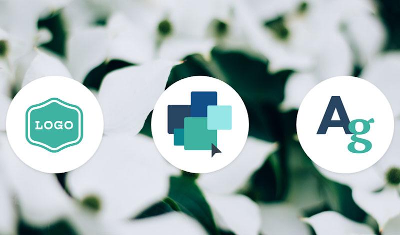 طراحی حرفه ای هویت بصری در ظریف گرافیک